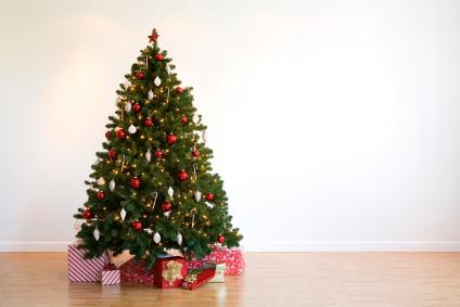 comprobar que el rbol es fresco - Arbol De Navidad Pequeo