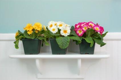 Decoraci n decoraci n de hogar en primavera for Decoracion del hogar en primavera