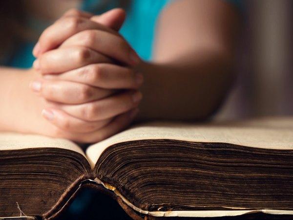 Citas bíblicas