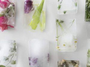 usos para la bandeja de hielos