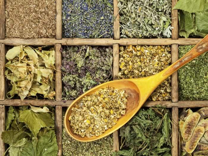 Deshidratar hierbas aromáticas con el microondas