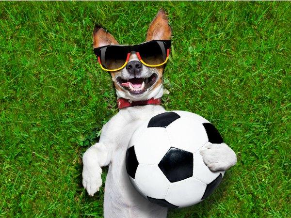 Chistes de Fútbol