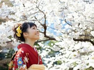 Japón, que podemos aprender de un país fascinante