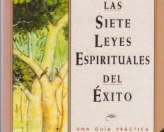 7-LEYES-UNIVERSALES-DEL-EXITO