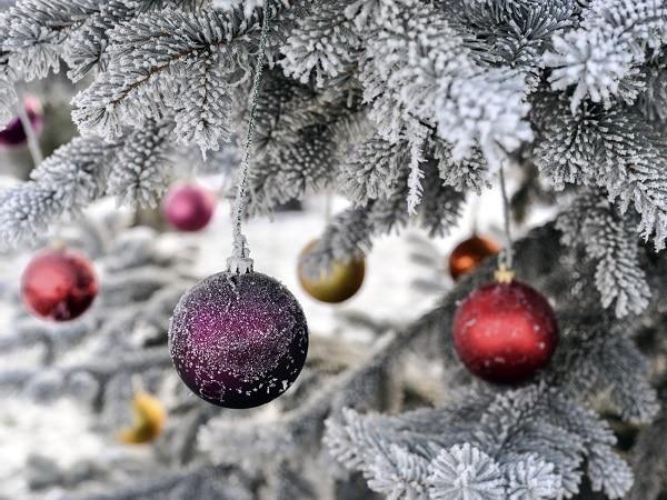 Cómo vive la Navidad Aries-euroresidentes
