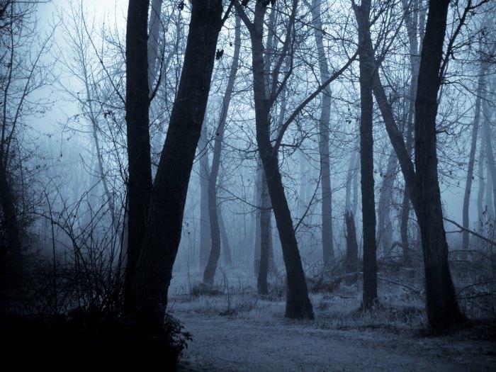 Rituales de Magia Negra en el bosque
