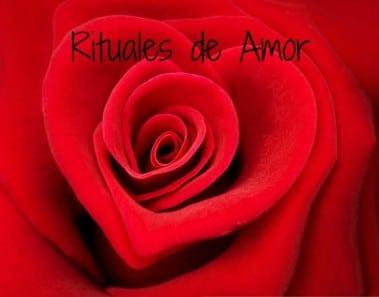 Rituales de Amor: Rosas rojas