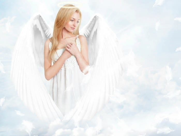 angel-alada-euroresidentes