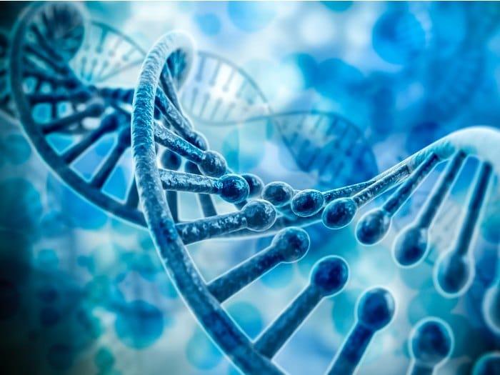 Constelaciones Familiares: ADN