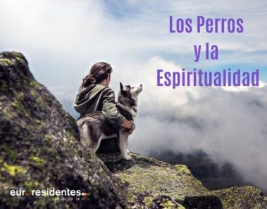 Los Perros y la Espiritualidad