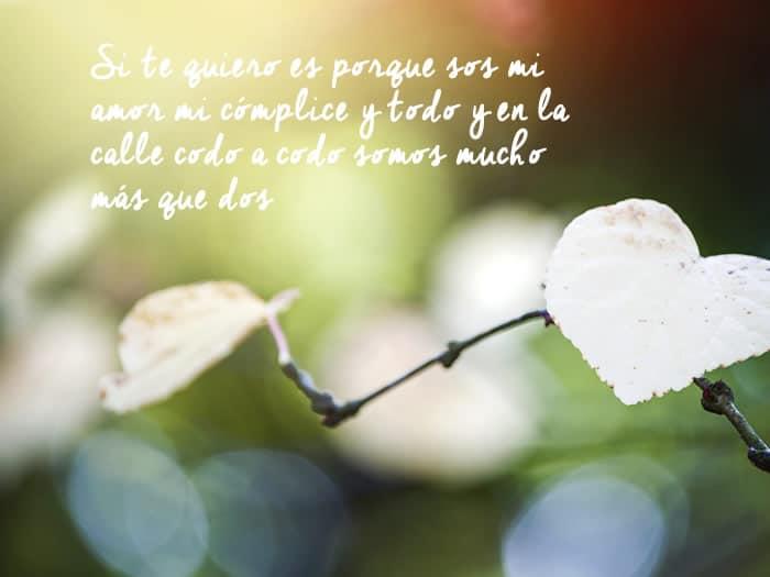 Frases De Amor Con Rima De Canciones Y Poemas Frases Y Citas Celebres