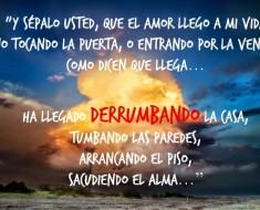 Frases De Amor Falso Frases Y Citas Celebres