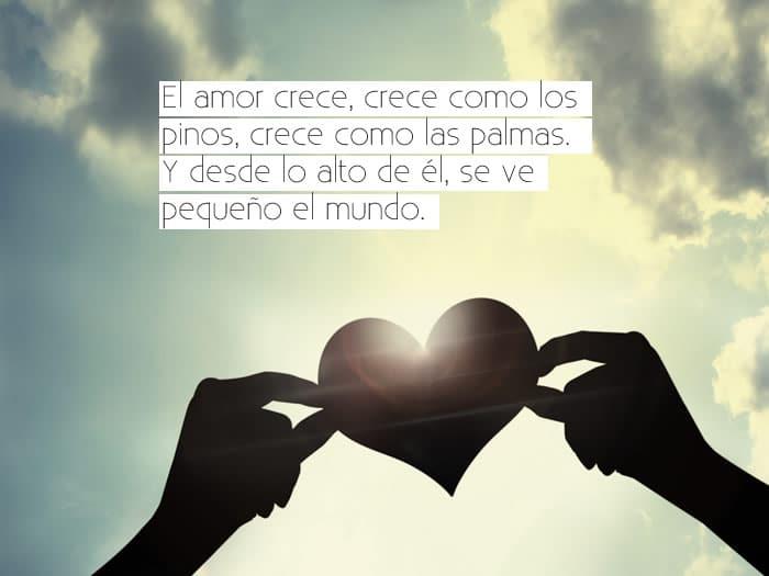 Frases De Amor Unicas Frases Y Citas Celebres