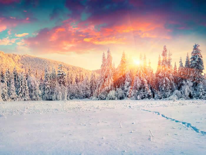 Los 28 Mejores Refranes Sobre La Nieve Frases Y Citas Célebres
