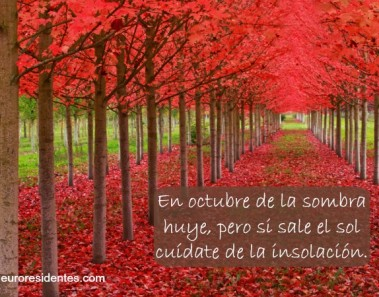 otoño1-refran