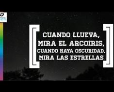 Frases De Amor Y Odio Frases Y Citas Celebres