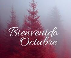 Bienvenido-octubre1