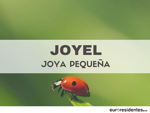 palabra significado joyel