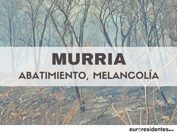 palabra significado murria