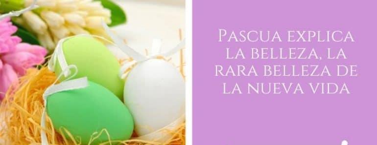 tarjetas de Pascua para compartir