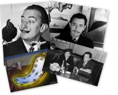 collage-DALI
