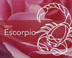 Horóscopo Escorpio Mayo 2020
