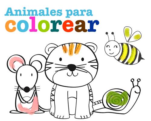 Animales para colorear - Manualidades