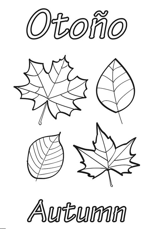 dibujo hojas otoño para imprimir