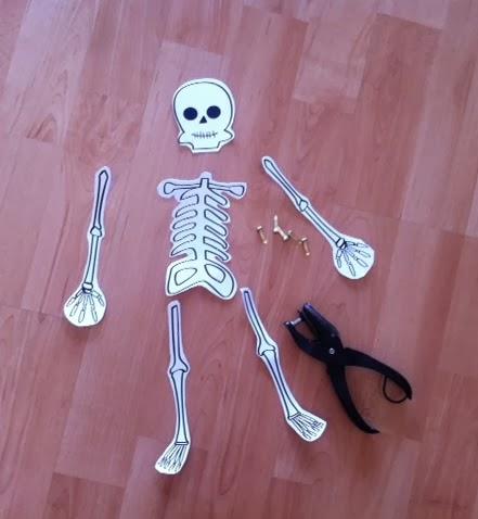 esqueleto articulado Halloween
