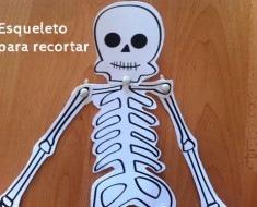 esqueleto_recortar_armar
