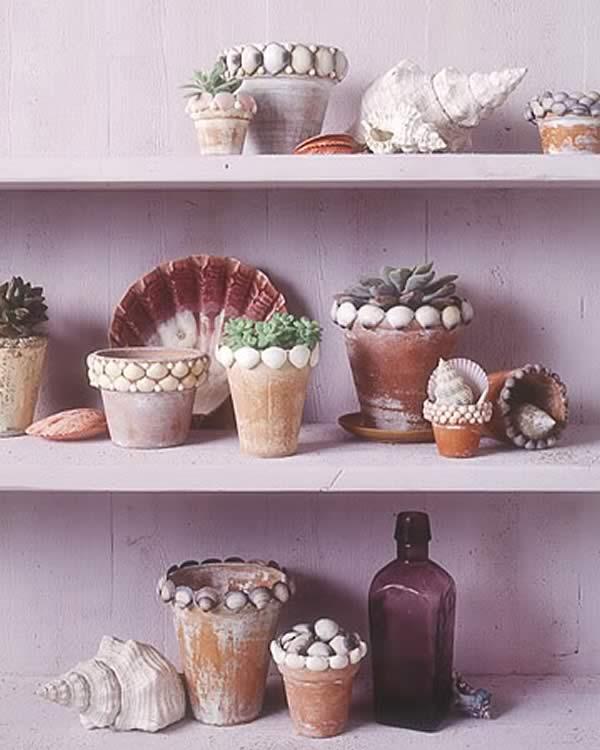 Manualidades con conchas marinas: maceteros