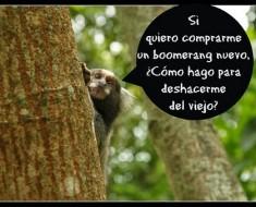 mono-pensando-chiste