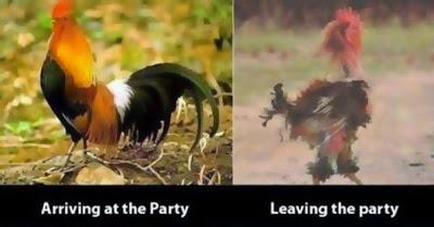 imágenes graciosas del antes y el después de una fiesta