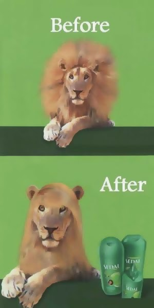 imágenes graciosas del antes y el después de la pelu
