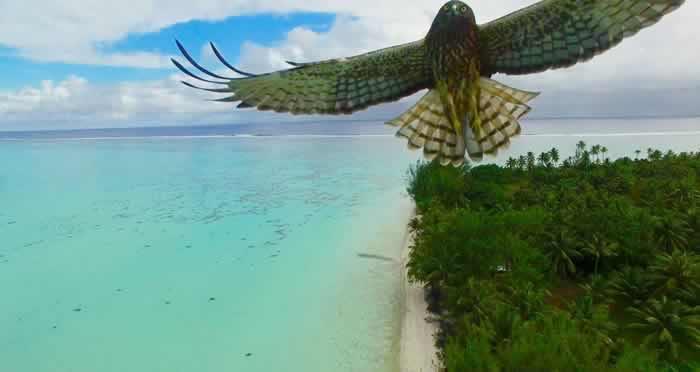 mejores fotos con drones 2016