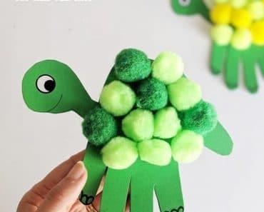 5 formas de hacer una tortuga