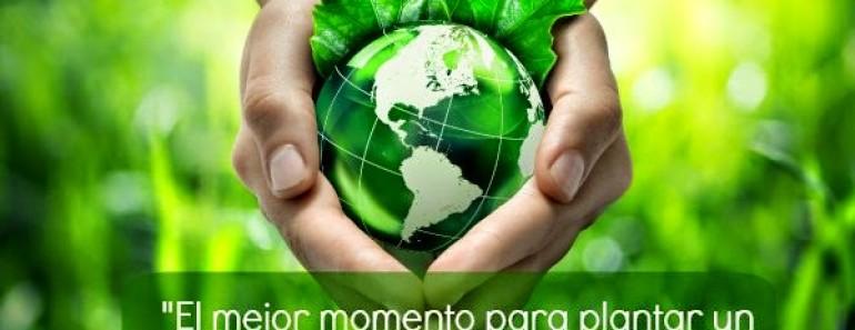 Frases para cuidar el Medio Ambiente
