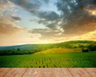 La generosidad de una familia en la granja