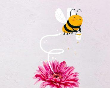 24 curiosidades sobre las abejas
