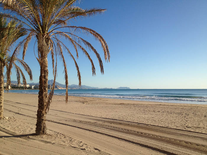 Muchavista Beach Playa El Campello Alicante