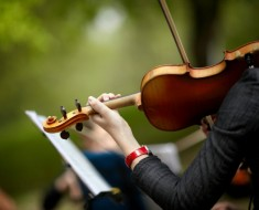hnad of woman with violin, selective focus on center of image