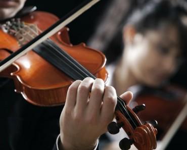 Vienna Tonkunstler Orchestra