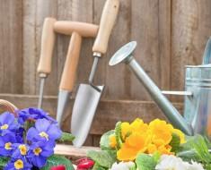 truco para limpiar las herramientas del jardín y evitar que se oxiden