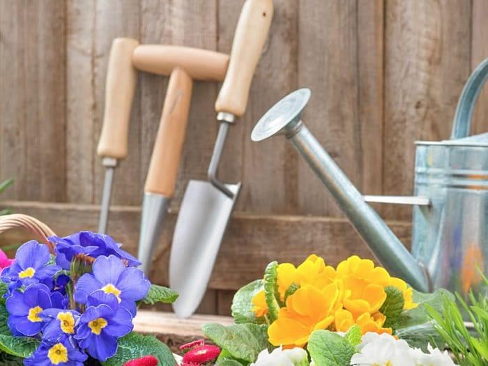 Limpiar las herramientas de jardiner a trucos y consejos for Trucos jardineria