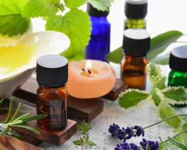 Plantas y aceites naturales para ahuyentar a los mosquitos