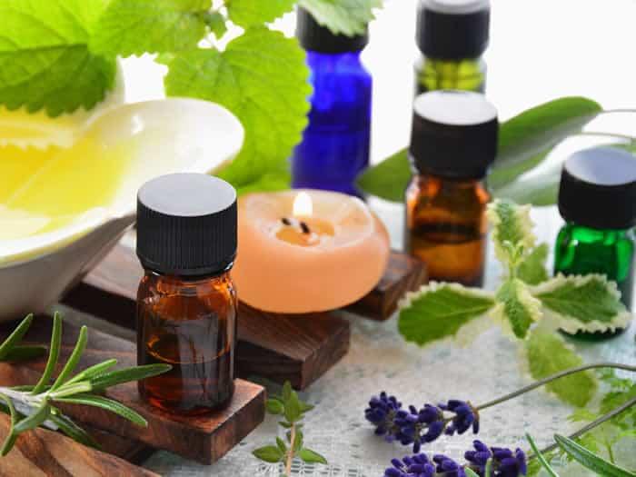 Plantas y aceites naturales para ahuyentar a los mosquitos - Como ahuyentar a los mosquitos ...