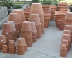 pots-790941