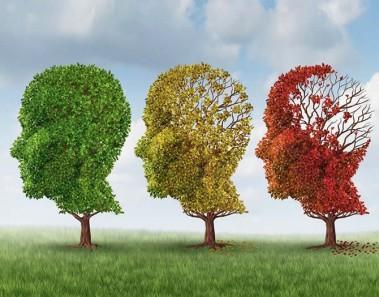 Consejos para prevenir el alzheimer