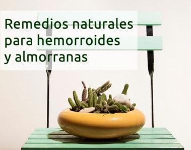 Remedios naturales para las hemorroides y almorranas