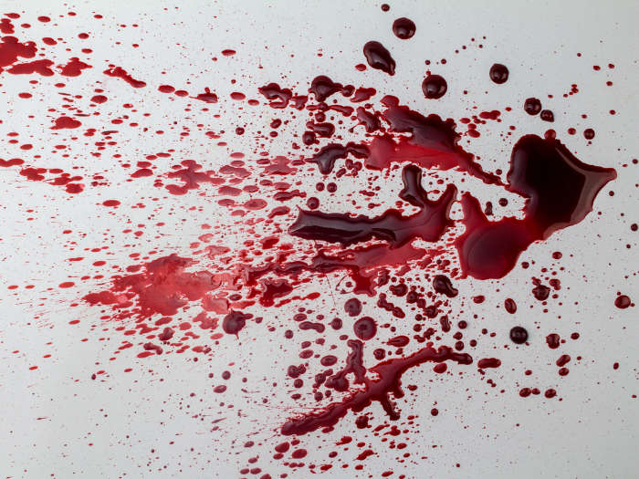 Sangre falsa casera